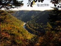 New River Gorge overlook.