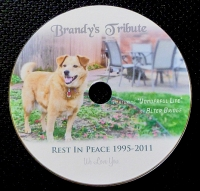 CD Art created for my sweet pup who died in January 2011.  This disc contains the tribute video that I created in her memory.